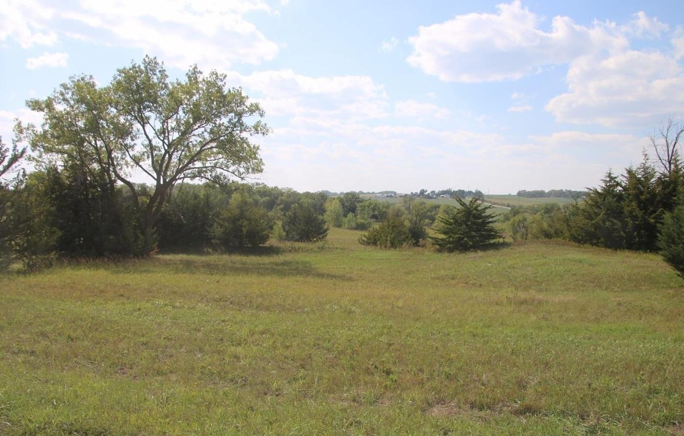 Homestead Land Company real estate property photo